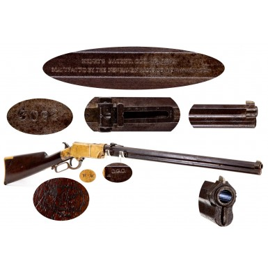 1st DC Cavalry Martial Henry Rifle